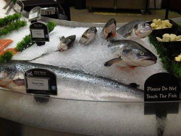 ASDA fish counter 25 June 2009